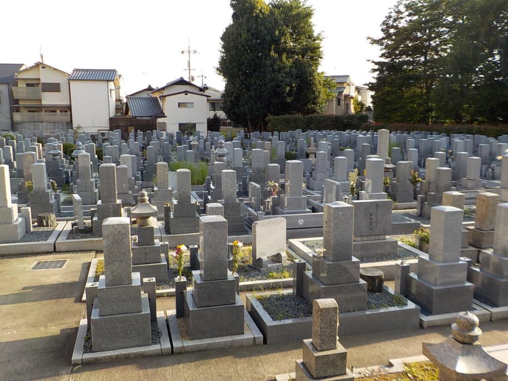 墓地内は明るく整備が行き届いています