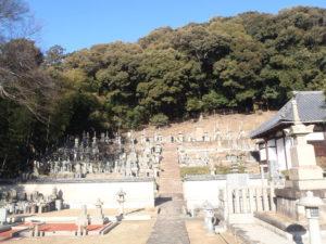 自然豊かな墓地